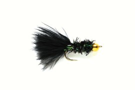 Cactus fly Black