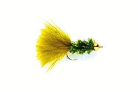 Cactus fly olive