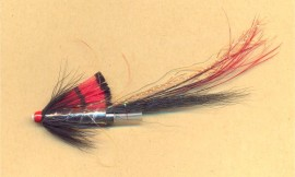 Black Boar Shrimp - Tungsten tube