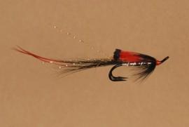 Black Boar Shrimp