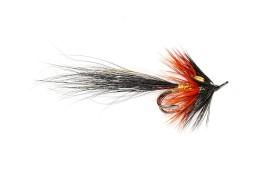 Inverness Black Shrimp