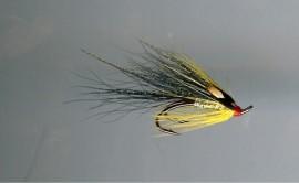 Gledswood Shrimp