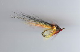Golden Willie Gunn ( ghillies choice )