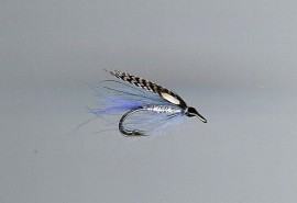RS Blue CDC fly