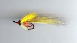 Yellow Shadow Shrimp