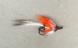 Silver Shadow Shrimp