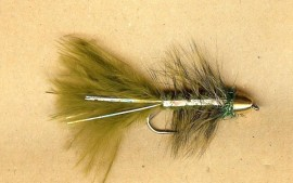 South America Series Golden Bullet Olive Flash Leech