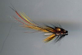 Willie Gunn Pot Bellied Pig Tungsten