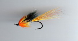 Cascade Shrimp single