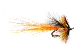 Cascade Willie Gunn (pro choice)