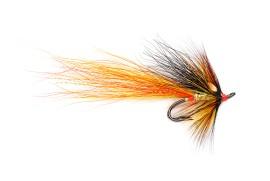 Cascade Willie Gunn Gold