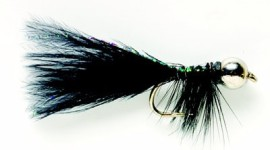 South America Series JW Nymph Black