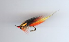 RS Park Shrimp (Pro choice)