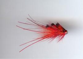 Red Bobby Shrimp