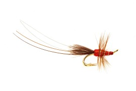 Red Frances Gold Double (Pro choice)